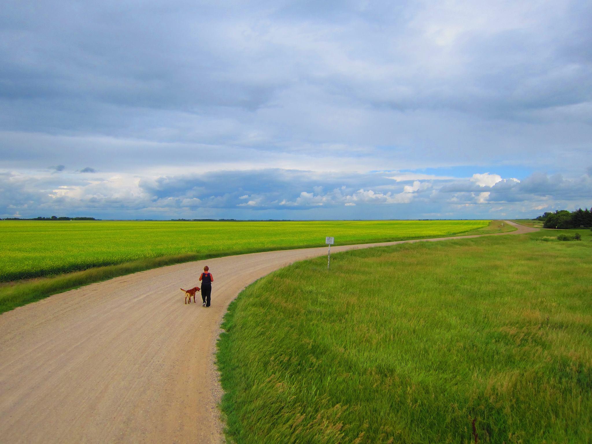 Dog Rescue Saskatchewan