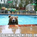 are you coming in the pool