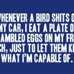 bird poop scrambled eggs