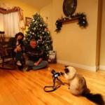 cat takes photo