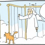 cats have nine lives