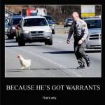 chasing chicken