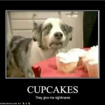 cupcake nightmares