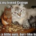 dis my friend george