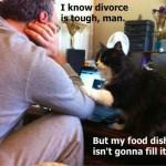 divorce is tough