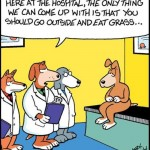 eat grass