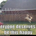 everyone deserves to be happy