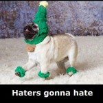haters going to hate
