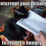 interupt you leisure
