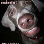 to much coffee