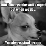 you steal my poo